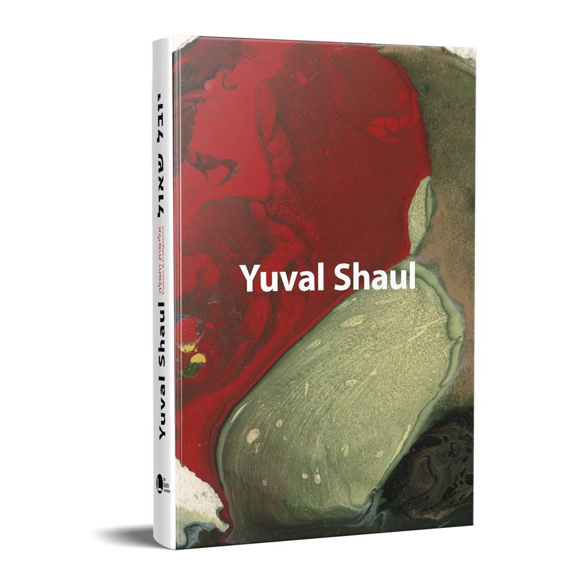 יובל שאול, אלימות וחמלה – יובל שאול, קרן לוין לאמנות
